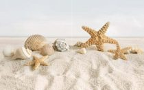 Golden Tile 50x80 Summer Stone Holiday dekor 4 db-os szett
