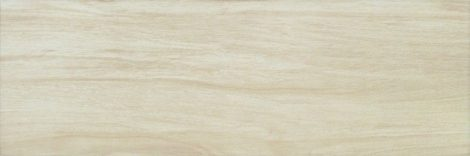 Zalakerámia Amazonas ZGD 62104 gres fahatású padlólap 20x60 cm